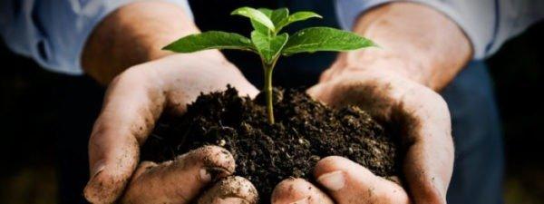Le compostage : un pas à la portée de tous vers une économie circulaire !