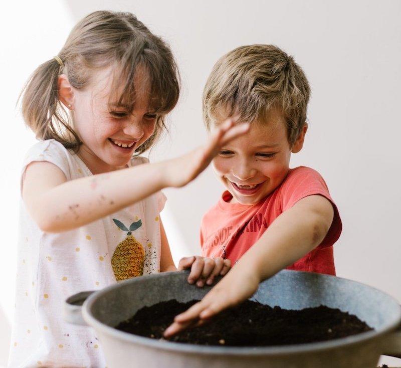 Compost-plantes-jeunes-generations